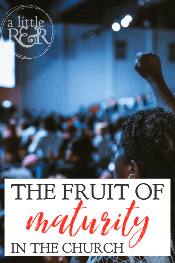 In a generation when leaders are falling and strong Christians are led astray by strange doctrine, we must recognize the fruit of maturity in the church. #alittlerandr #maturity #HolySpirit #submission #gospel
