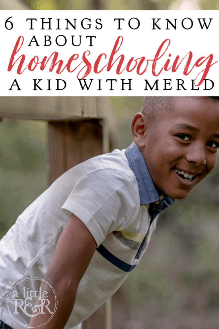 MERLD means Mixed Expressive-Receptive Lanugage Disorder. Here are 6 things parents need to know about homeschooling a kid with MERLD. #alittlerandr #MERLD #langaugedisorder #homeschool #specialneedshomeschooling