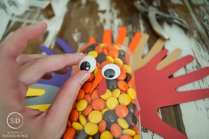 Turkey Treat Bags