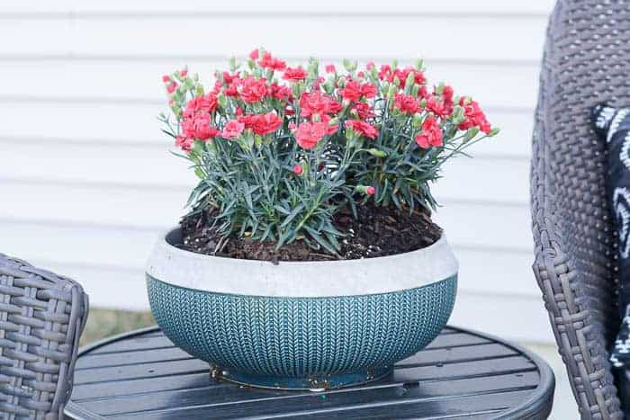 teal pot with flowers