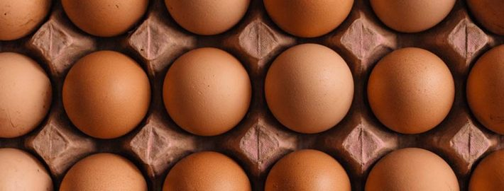 Eggs - Protein for healthy eating