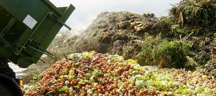 Turning Food Waste into Energy