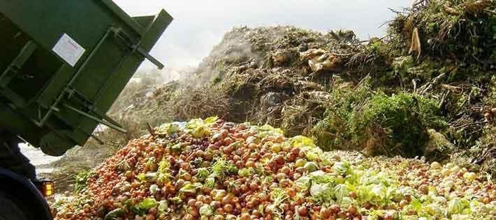 Turning Food Waste into Energy