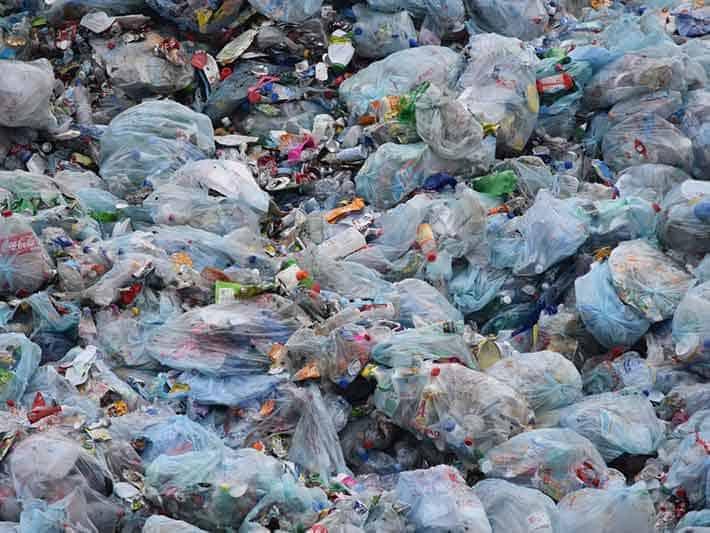 Plastic Waste is Everywhere