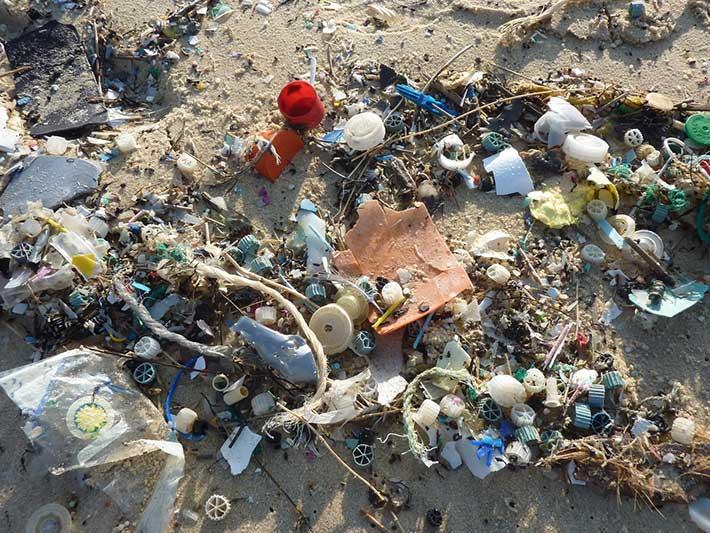 Ocean Plastics on the Beach