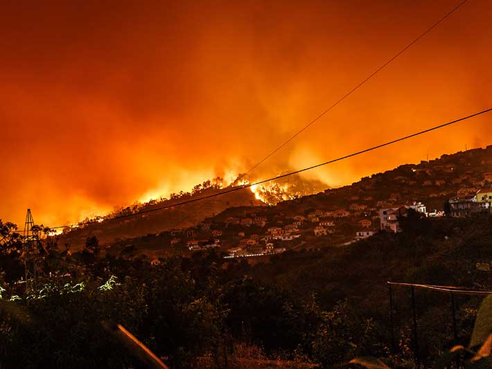 Forest Fires Portugal