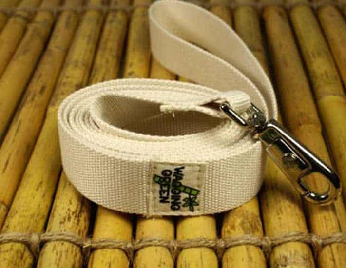 Wagging Green Bamboo Dog Leash Sustainable Pet Product