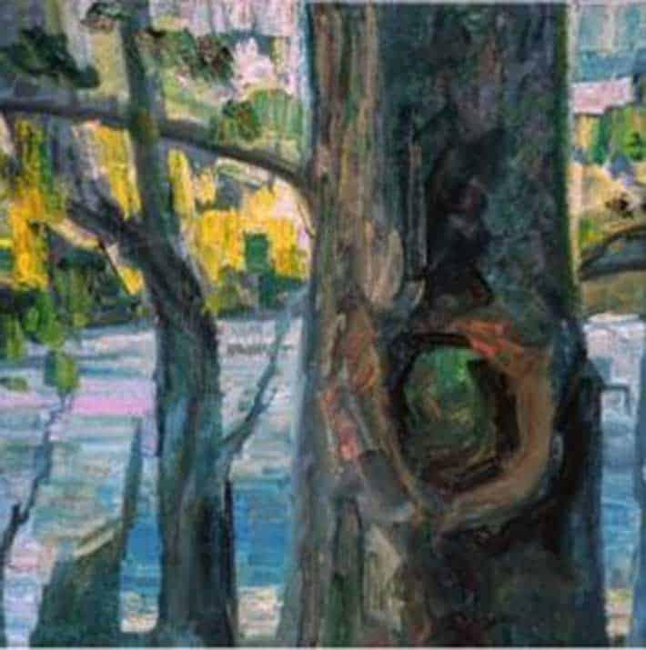 Fatma kadir, Agac tacizi / Tree abuse