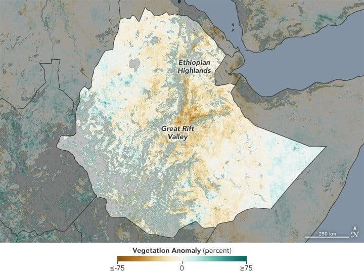 """map is based on data from the Moderate Resolution Imaging Spectroradiometer (MODIS) on NASA's Aqua satellite. The map shows the NDVI anomaly: it contrasts vegetation health from March 29 to April 5, 2016, relative to the long-term average from 2000–2015. Brown areas show where plant growth, or """"greenness,"""" was below normal. Greens indicate vegetation that is more widespread or abundant than normal for the time of year. Grays depict areas where reliable data were not available, usually due to cloud cover. Source: NASA"""