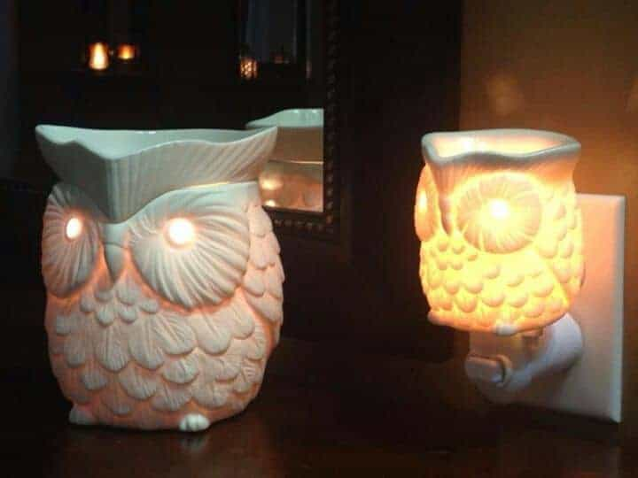 Buy Scentsy Whoot Owl Warmers UK and Europe