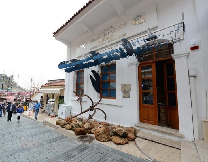 Морской биологический музей Анталии