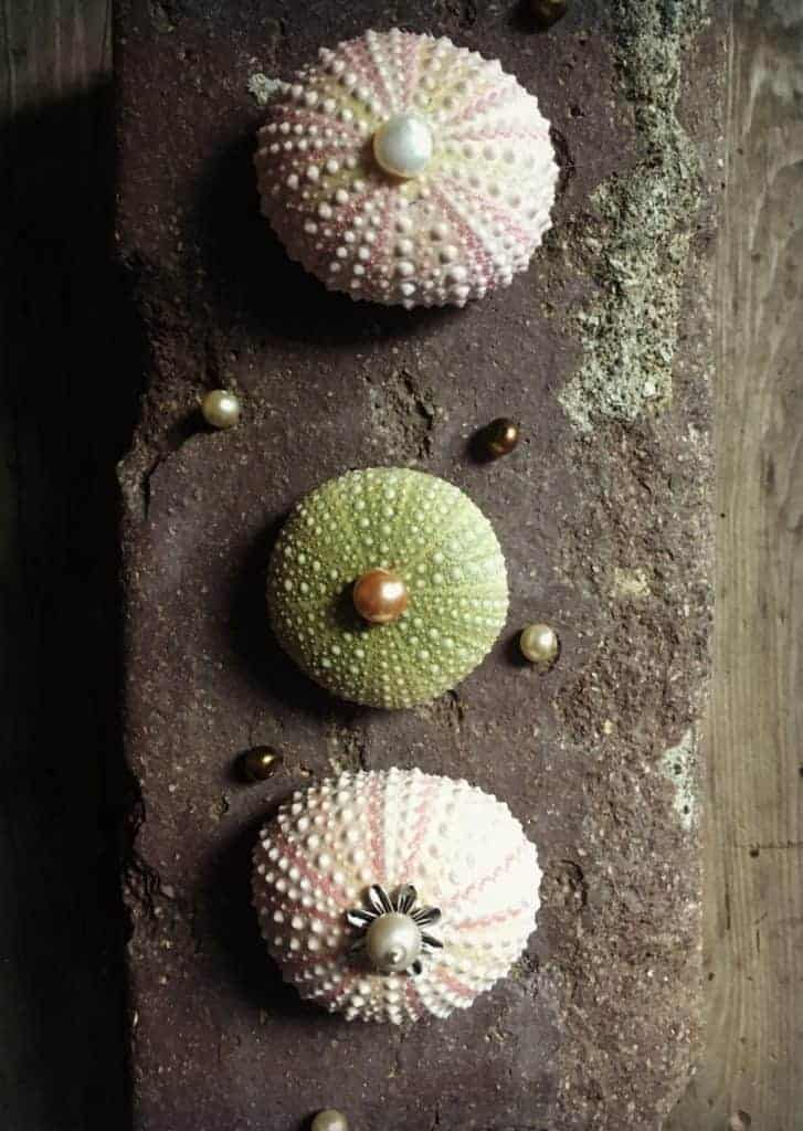 Sea Urchin Necklace 2