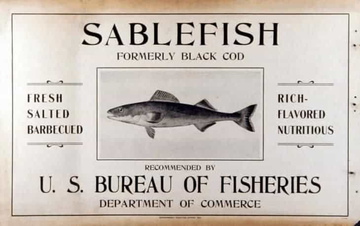 Sablefish formerly Black Cod