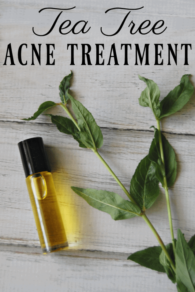 Did you know there is one ingredient that will banish a zit with just one application? Learn all about this all natural tea tree acne treatment! #acne #teatree #essentailoils #greenbeauty #naturalskincare