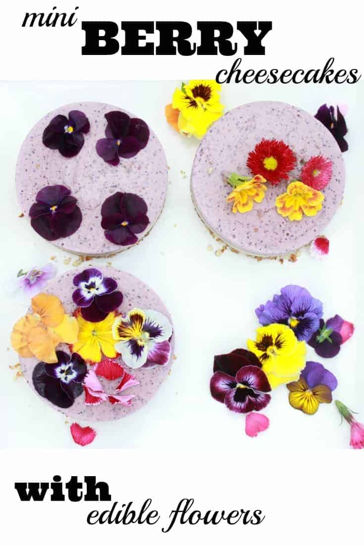 How to make beautiful raw berry cheesecakes decorated with edible flowers from Amy at Mr and Mrs T Plus Three
