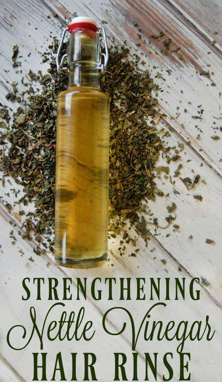 Strengthening Nettle Vinegar Hair Rinse can help with hair loss, strengthen hair, help with dandruff, and increase a healthy hair shine. Nettle is the perfect herb for hair care! #nettle #vinegar #hairrinse #herbal #greenbeauty #hair #naturalremedies