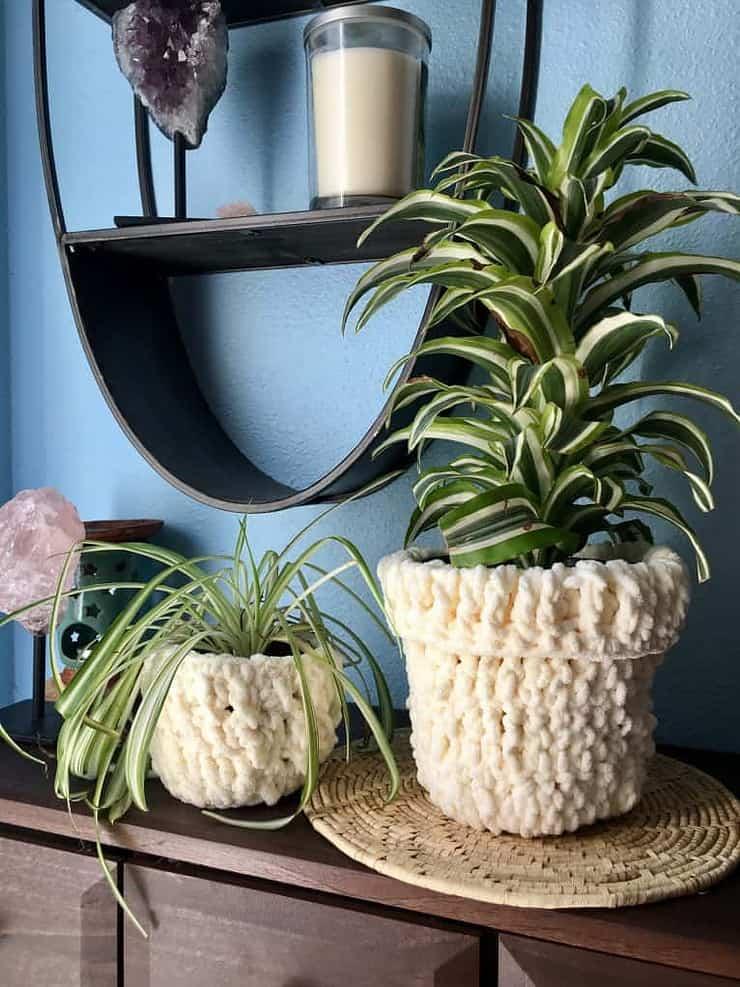 Houseplants with crochet cozies on the pots