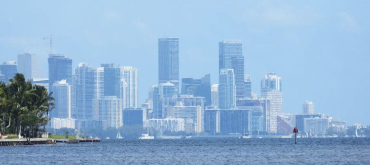 Miami skyline from Matheson Hammock Park along the Old Cutler Trail.(Photo: David Blasco)