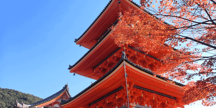 You can tour kyoto's beautiful temples and other historic sites with kids and tweens