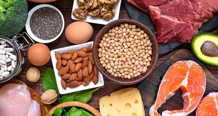 مصادر البروتين