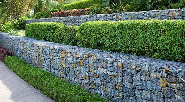 Tiered Hedge retaining wall