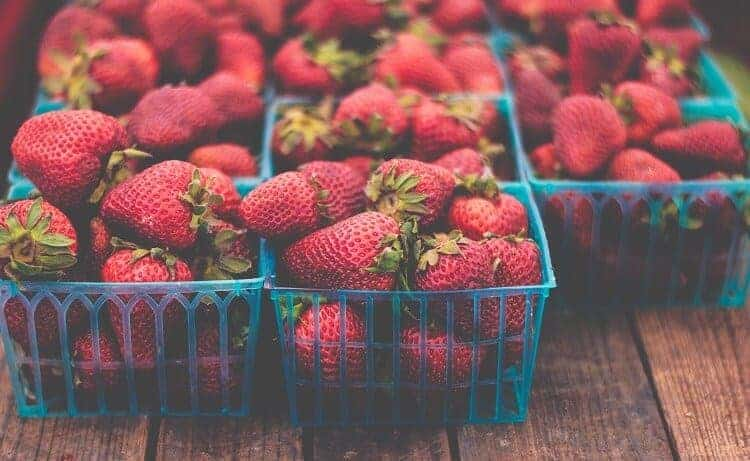 When to Plant Strawberries in Alabama