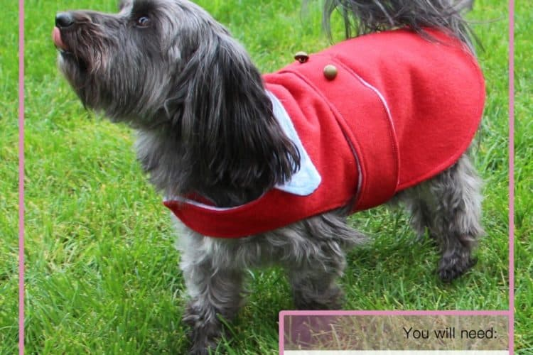 The Tailoress PDF Sewing Patterns - Jasper Jacket for Dogs Tutorial