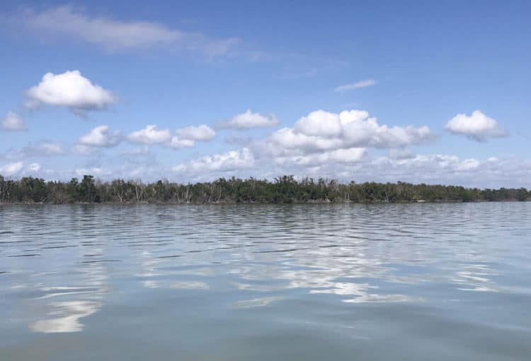 coastline with clouds Fabulous Florida wilderness camping: Paddling Flamingo to Cape Sable