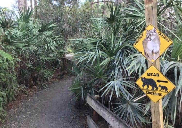 Trail at Busch Wildlife Sanctuary, Jupiter, Florida (Photo: David Blasco)