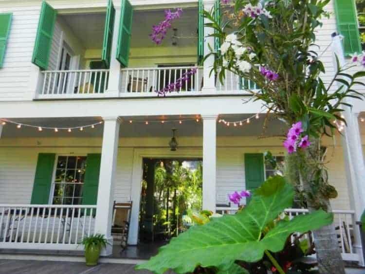 Key West Audubon House orchids