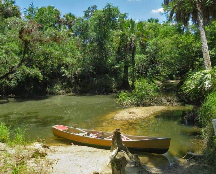 Telegraph Creek, a tributary of the Caloosahatchee River near Fort Myers (Photo: Bonnie Gross)