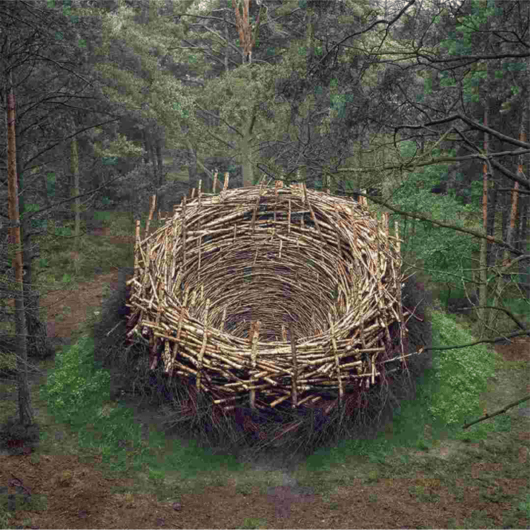 Nils-Udo is considered one of the founders of environmental art