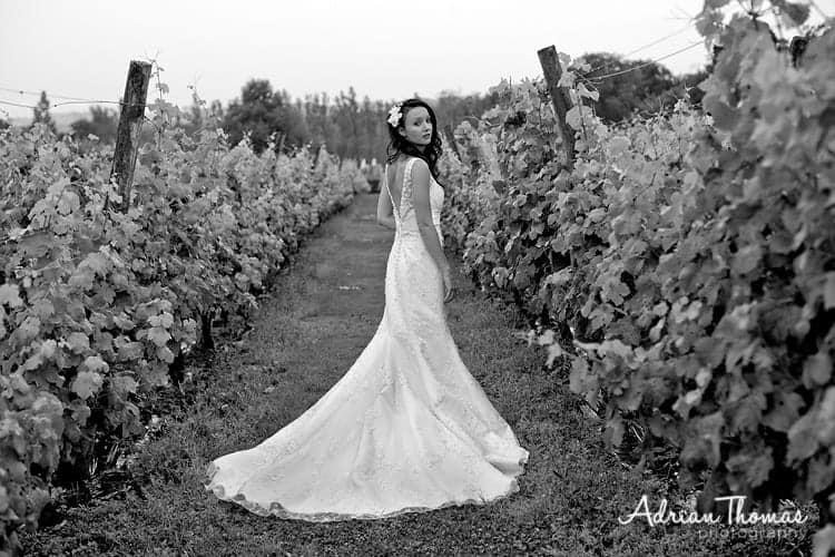 Bride in Llanerch Vineyard