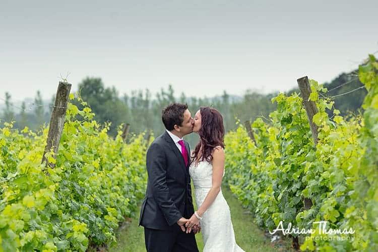 Image of Bride and groom at Llanerch Vineyard wedding venue