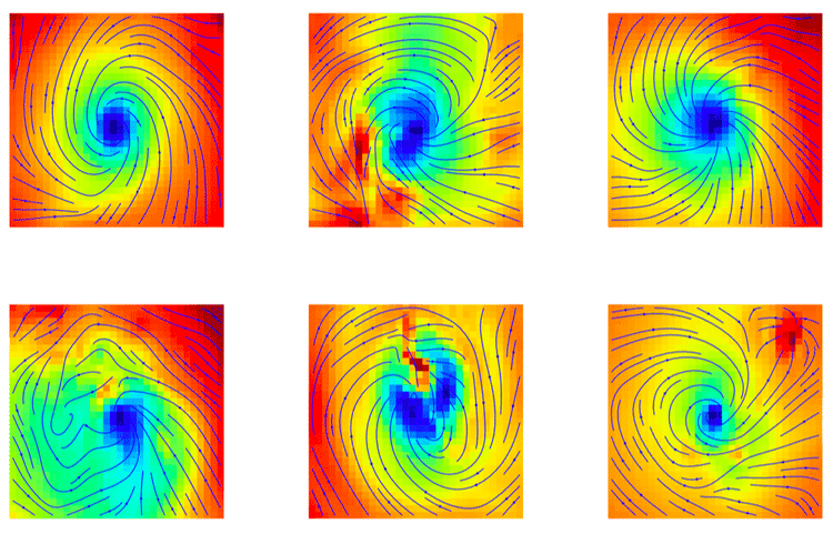 Images correctly identified as tropical cyclones by machine learning. From: Liu et. al, 2016.