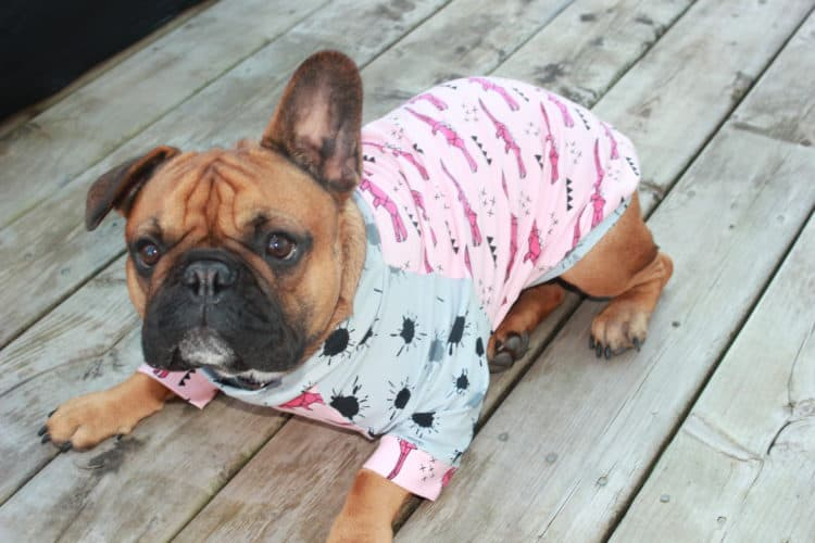 The Tailoress PDF Sewing Patterns - French Bulldogs Clothing Range Pattern Testing