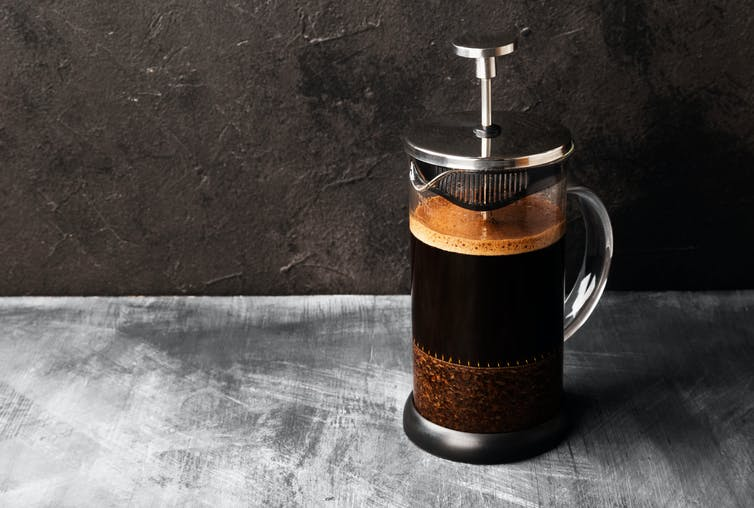 French press coffee brewer