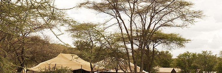 Mara Kati Kati Tented Camp View