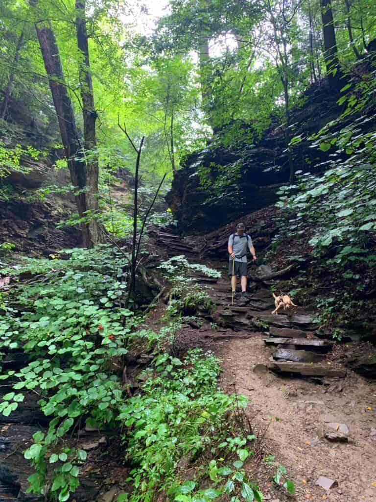 ricketts glen state park trail dog