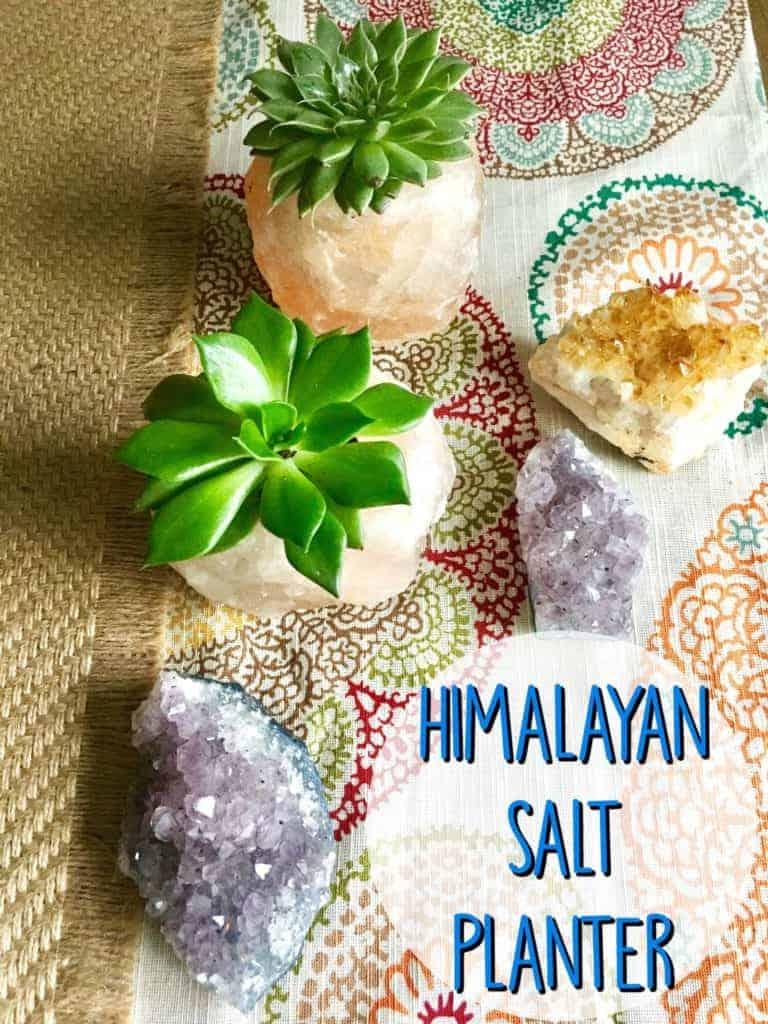 himalayan-salt-planter-pin