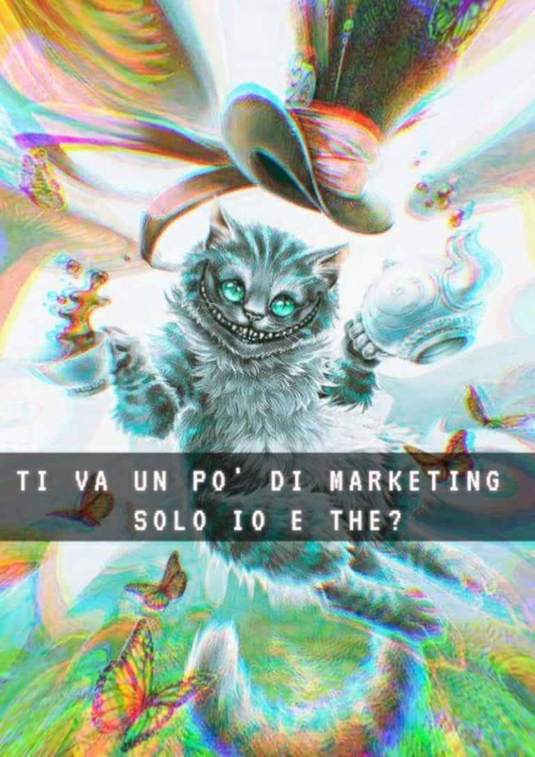 web marketing e gatti di copertina