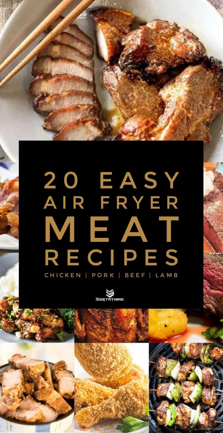 20 Easy Air Fryer Meat Recipes for Chicken, Pork, Beef & Lamb