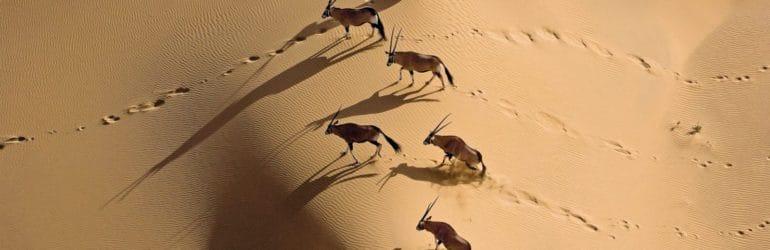 Andbeyond Namibia