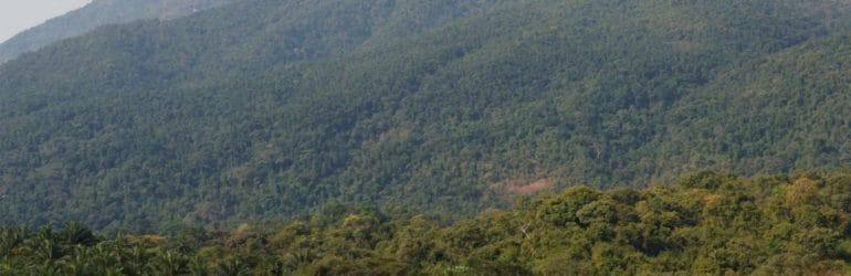 Greystoke Mahale Tanzania