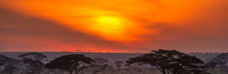 Namiri Plains sunset