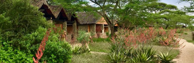 Ndutu Safari Lodge Landscape