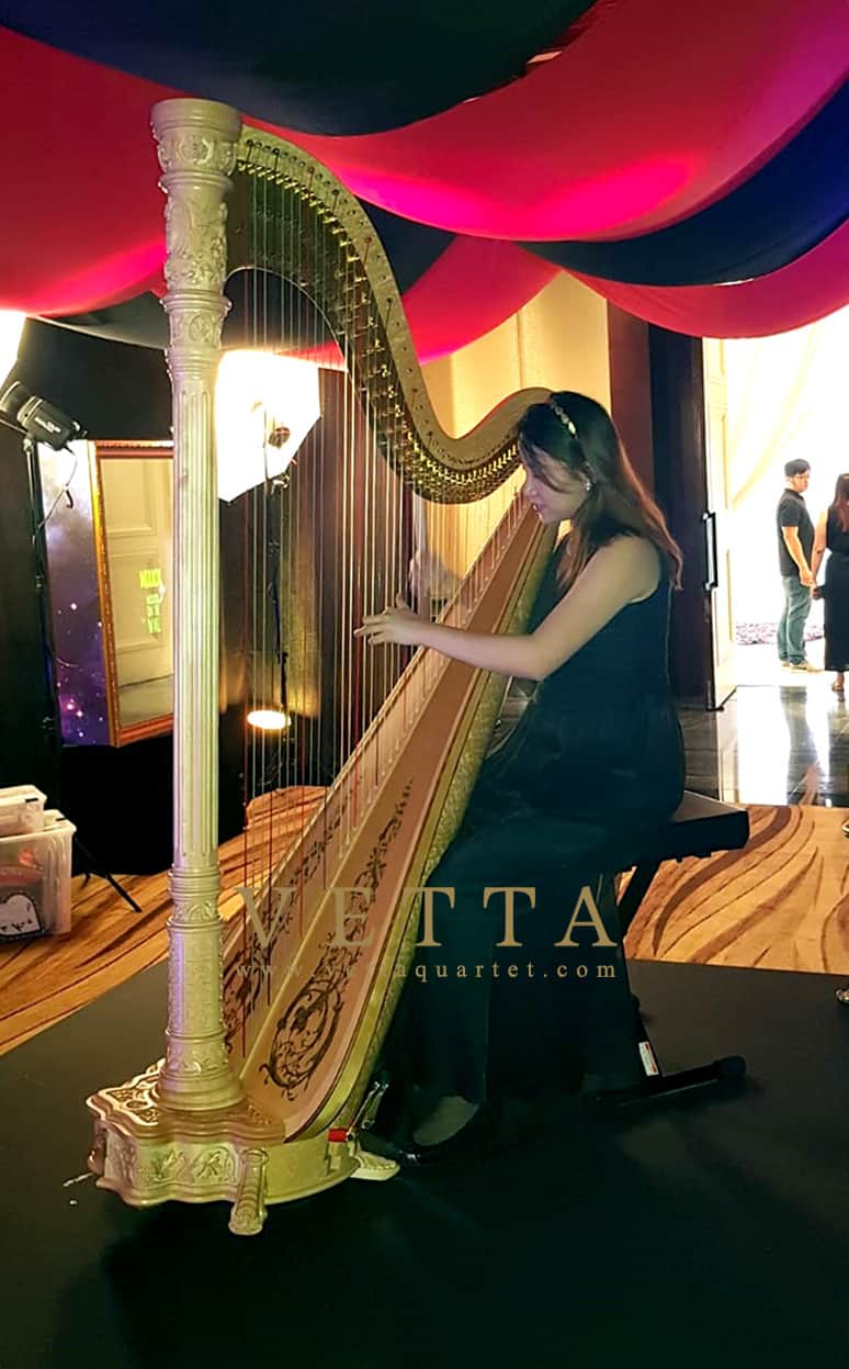 Karen K the solo harpist for corporate event