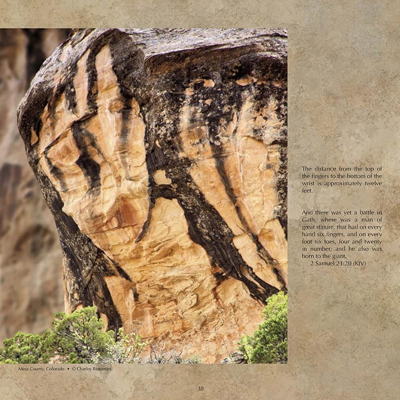 Fossilized Hand of a Giant! Do You See What I See? Evidence of the Worldwide Flood