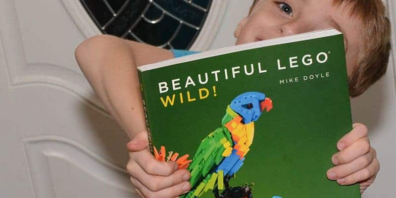 The very best lego books for kids of all ages.