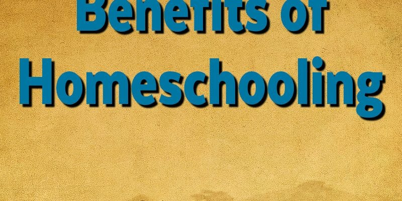 homeschool benefits - the benefits of homeschooling from a mom's perspective.
